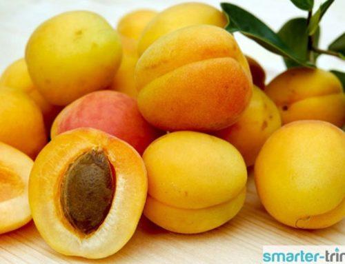 Aprikosen – Saftsommer in gelb